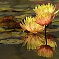 Three Perfect Lilies by Mary-Ella Bowles