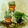 Three Potted Plants by Elizabeth Robinette Tyndall