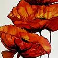 Three Red Poppies by Karen Chatham