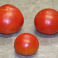 Three Red Tomatoes by Paula Coley