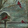 Three Reds by Jodi Monahan