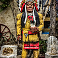 Three Rivers Indian by Diana Powell