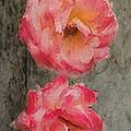 Three Roses by Dale Stillman