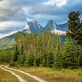 Three Sisters And A Dirt Road by Joan Carroll