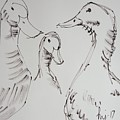 Three White Ducks Drawing by Mike Jory