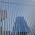 Three World Trade Lashed by S Paul Sahm