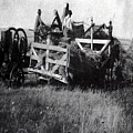 Threshing Day by Andrea Lawrence