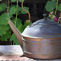 Thrift Store Teapot by Snake Jagger