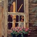 Through The Cabin Window by Lynda  Lawrence