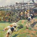 Through The Fence by Arthur Charles Dodd