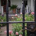 Through The Fence by Buck Buchanan