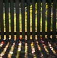 Through The Fence by Hideaki Sakurai