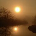 Through The Murky Mist by Bonfire Photography