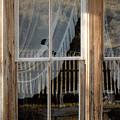 Through The Windows Of Bannack 5 by Teresa Wilson
