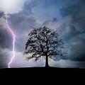 Thunder And Lightning by Edmund Nagele