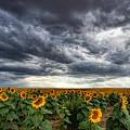 Thunder On The Plains by Jim Garrison