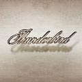 Thunderbird Badge by Yo Pedro