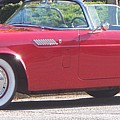 Thunderbird Classic 1955 by Eric  Schiabor