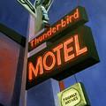 Thunderbird Motel by Sally Banfill