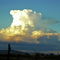 Thunderhead Cloud by Deborah Moen