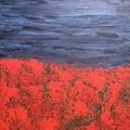 Thunderstorm Over The Poppy Field by Gi Art