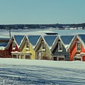 Winter View Ti Park Boathouses by Dennis McCarthy