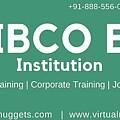 Tibco Be Training Institution by Virtualnuggets Radhamma