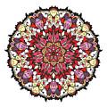 Tibetan Mandala by Long Shot