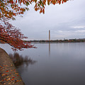 Tidal Basin In Fall by Michael Donahue
