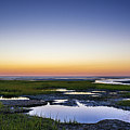 Tidal Pool Sunset by John Greim