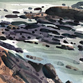 Tidal Pools by Donald Maier