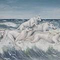Tidal Race by Debbie Plaskett