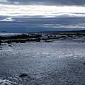 Tidal Secrets Haida Gwaii Bc by Barbara St Jean