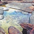 Tide Pool by Cassandra Buckley