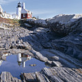 Tide Pool Reflection Pemaquid Point Lighthouse Maine by George Oze