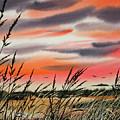 Tideland Sunset by James Williamson