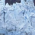 Tidewater Glacier In Glacier Bay by Rich Reid