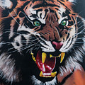 Tigar Snarl by Jamie Bishop