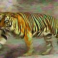 Save Tiger by Caito Junqueira