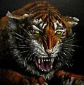 Tiger-1 Original Oil Painting by Natalja Picugina