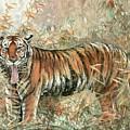 Tiger - 28 by River Han