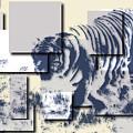 Tiger 5 by Joe Hamilton