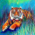 Tiger by Angie Wright
