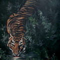 Tiger by Bryan Bustard