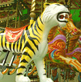 Tiger Carousel by Heather Lennox