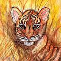 Tiger Cub by Chris Crowley