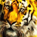 Tiger Fragmented In Thick Paint by Catherine Lott