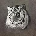 Tiger by Helene Fallstrom