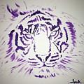 Tiger by Jack Bunds