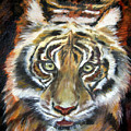 Tiger by Nancy Isbell